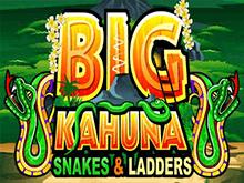 Снять выигранные деньги в автомате Большой Кахуна: Змеи И Лестницы