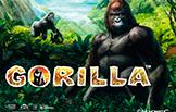 Gorilla игровые автоматы